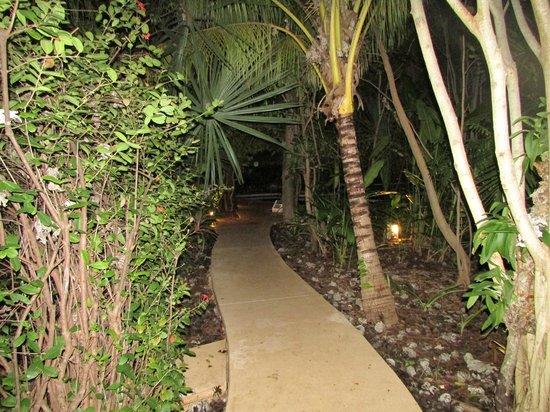 Sotavento Hotel & Yacht Club: entrada hacia la zona de habitaciones
