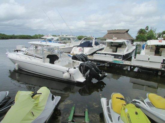 Sotavento Hotel & Yacht Club: Zona de Yates y vista al lago