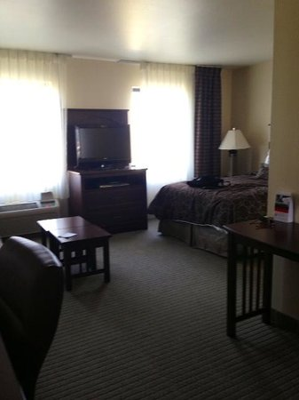Staybridge Suites East Lansing-Okemos (MSU Area): View of the room