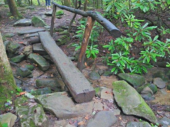 Noah Bud Ogle Cabin: Bridge along the trail