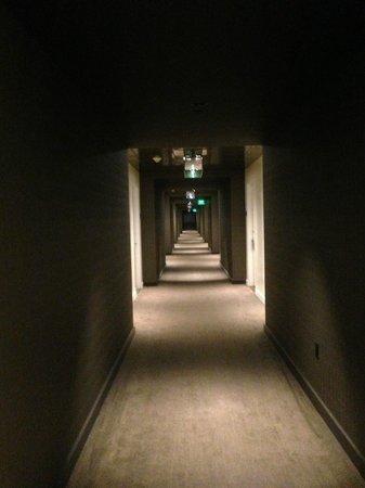 Hilton Garden Inn Los Angeles/Hollywood : couloir