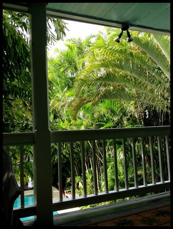 Ambrosia Key West Tropical Lodging: View from Tree Top 2
