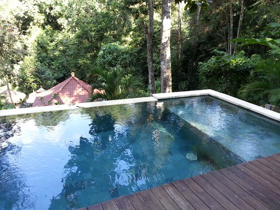 The Luku Boutique Villa & Gallery: hotel swimming pool