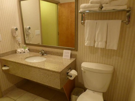 Holiday Inn Express Hotel & Suites Vernon : Good Bathrom