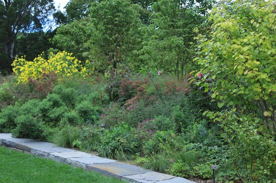Double Border Garden Picture Of New York Botanical