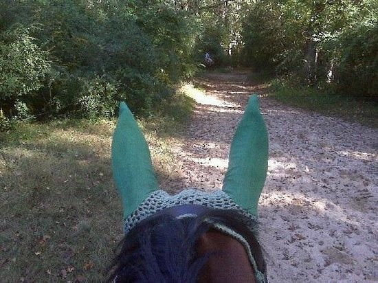 Trail riding in Hitchcock Woods