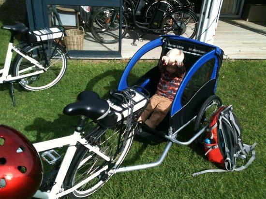 EcyclesNZ Bike Rentals: The kiddies trailer