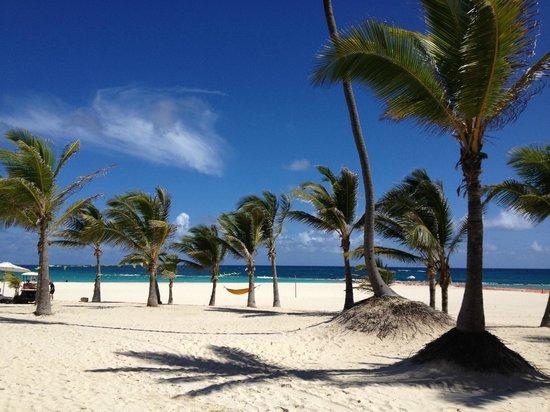 Hard Rock Hotel Punta Cana Beach At The