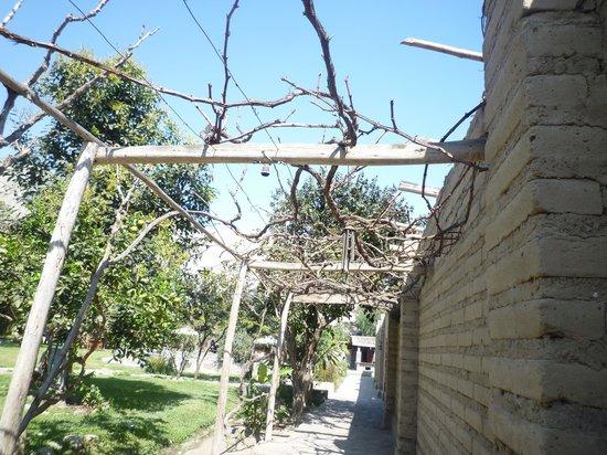 Refugio de Santiago Ecolodge: pasadizo