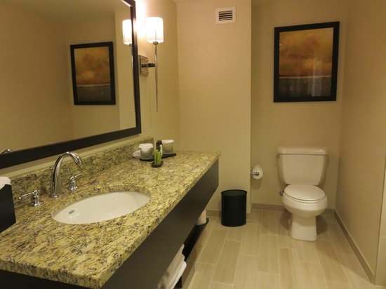 Embassy Suites by Hilton Chattanooga/Hamilton Place : Bathroom