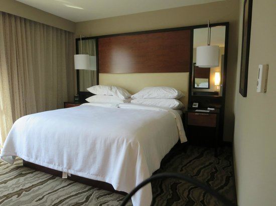 Embassy Suites by Hilton Chattanooga/Hamilton Place : King Bed