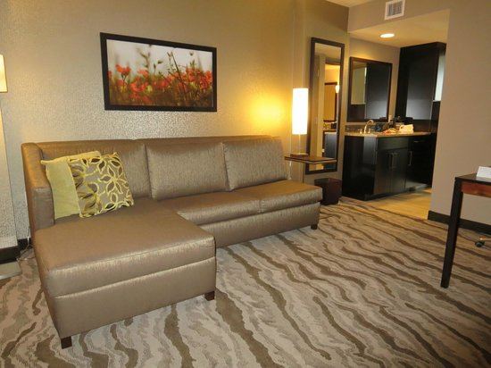 Embassy Suites by Hilton Chattanooga/Hamilton Place : Living Room