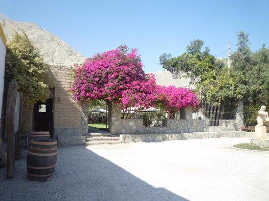Refugio de Santiago Ecolodge: la bella entrada