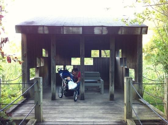 Wildwood Park: Observe from several bird blinds