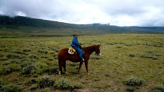 Laramie River Dude Ranch: giddy up