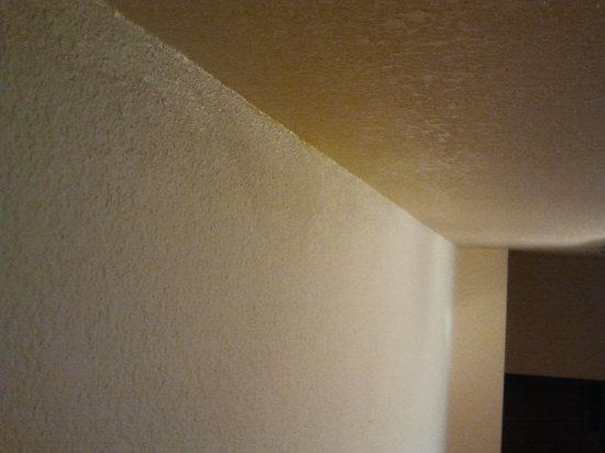 Days Inn San Diego-East/El Cajon: Cobwebs