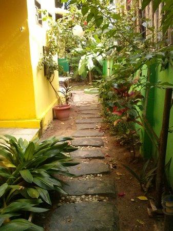 Pousada 100 Passos : Vista do jardim