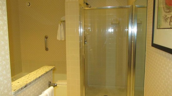 Hilton Chicago Oak Brook Suites : Shower