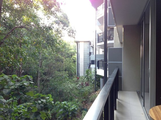 Peppers Noosa Resort and Villas: View from a national park facing room.