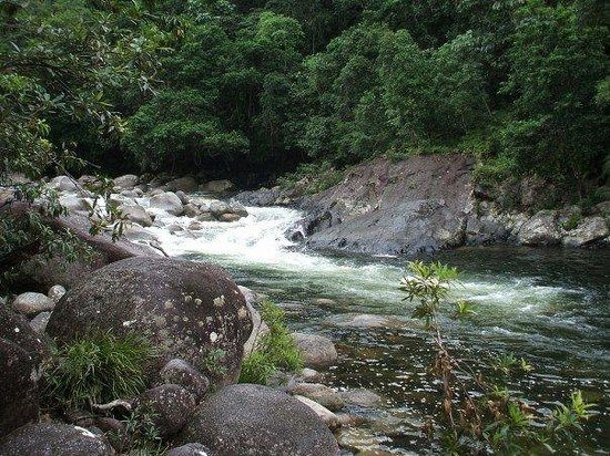 Dougies Backpackers Resort: Mossman Gorge - a short drive away