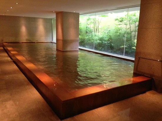 Hyatt Regency Hakone Resort and Spa: In house Hot Spring for men