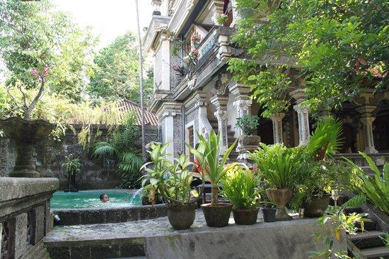 Sania's House Bungalows: piscine dans le jardin
