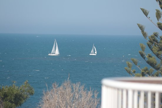 Osprey Apartments : Weekday races from the balcony