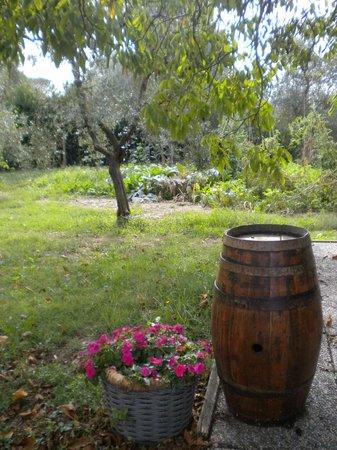 Agriturismo La Torretta: view