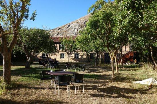 Posada de Santa Maria la Real: the orchard in the courtyard