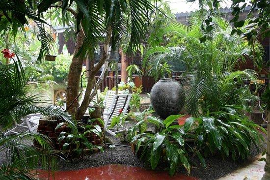 Sunils Garden Guesthouse: Garten