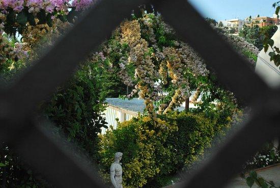 Villa Mimosa Bed & Breakfast Resort: Un giardino magico