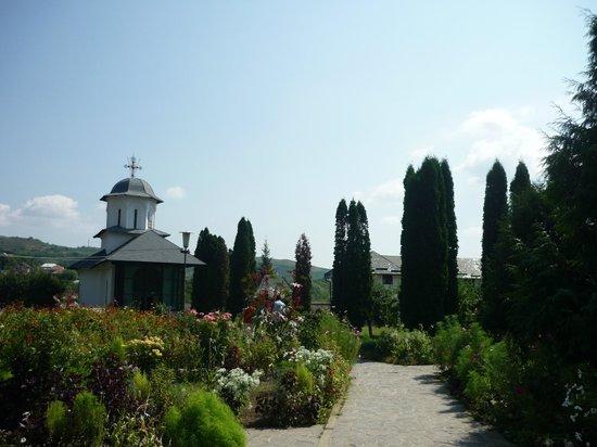 Ostrov Monastery Calimanesti