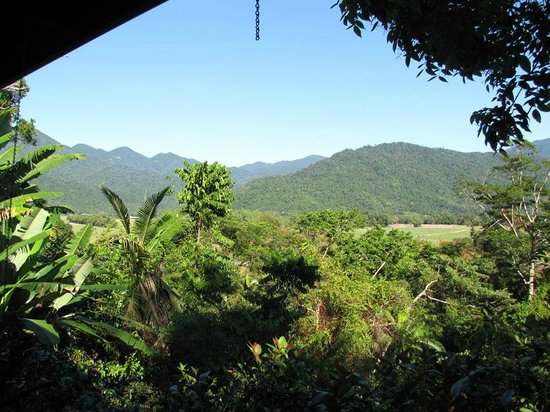 Mossman Gorge Bed and Breakfast: View from the veranda where breakfast is served