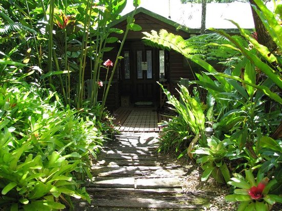 Mossman Gorge Bed and Breakfast: Walkway to the main entry
