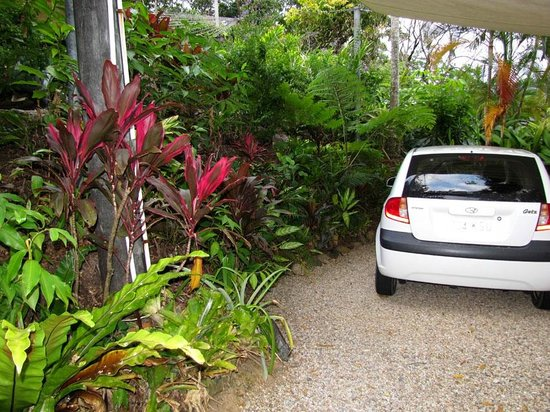 Mossman Gorge Bed and Breakfast: Carport