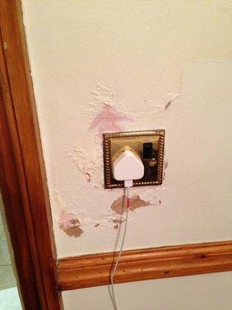 Europa House Hotel : plug socket next to shower !!