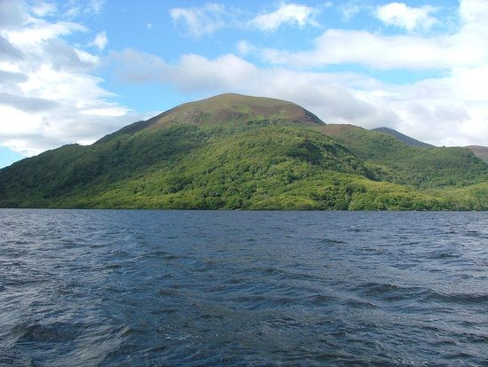 Toxic algae on Killarney lake a risk to public