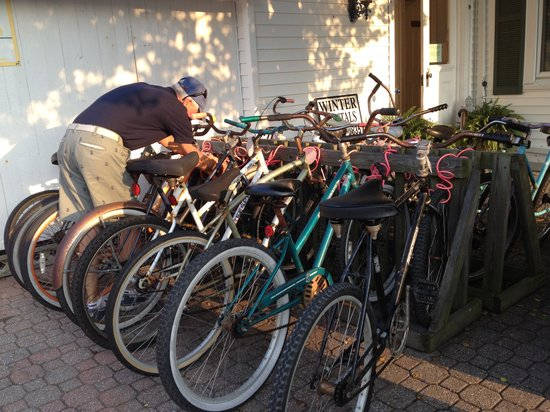 Beacon House Bed and Breakfast: Available bikes
