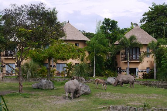Mara River Safari Lodge : ベットから・・・