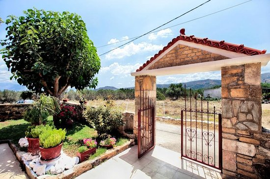 Olive Tree Apartments: Your door step