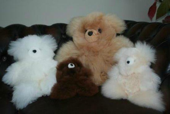 Butlers Farm Alpacas: Fluffy Teddies