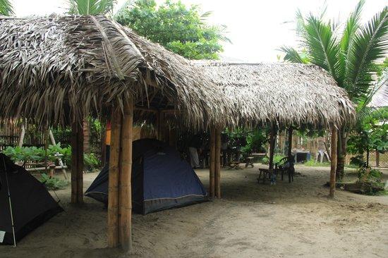 Camping Iguana: Camp area