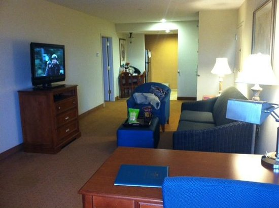 Homewood Suites by Hilton East Rutherford-Meadowlands: The living area of the room viewed from the desk area--look how much space!