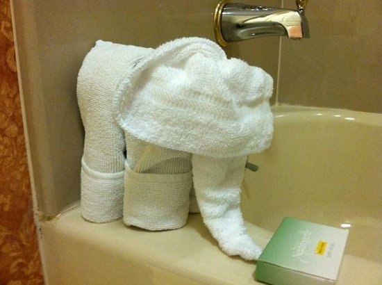 Homewood Suites by Hilton East Rutherford-Meadowlands: Cute towel elephant!