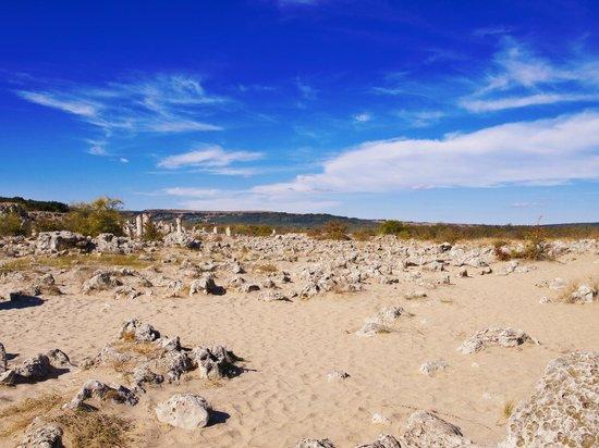 Varna, บัลแกเรีย: Каменный лес