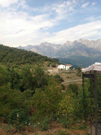 Posada el Bosque : View of the Picos de Europa