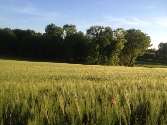 Agriturismo La Sorgente : Paesaggio