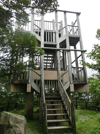 Amami Nature Observation Forest : 展望台