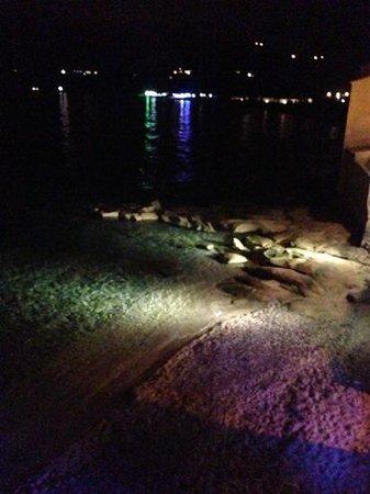 Hotel de la Plage Santa Vittoria : vista di notte!!!