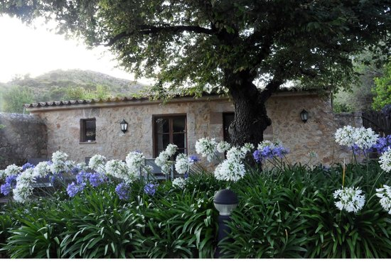 سان سيورانا: Terraza privada
